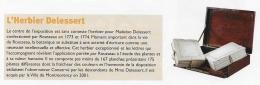 Rousseau musée 2 - copie 4